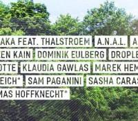 27.08.2016 // Sascha Ciccopiedi @ Grenzenlos Open-Air Festival, Weil am Rhein